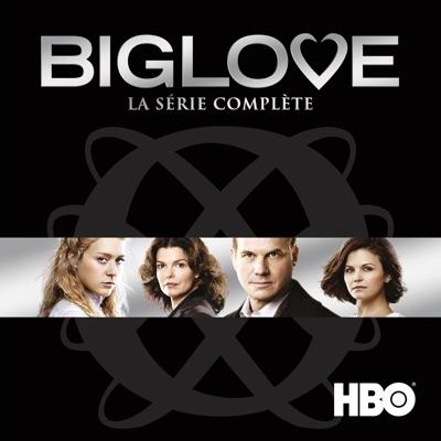 Jaquette  Big Love, La Série Complète (VF)