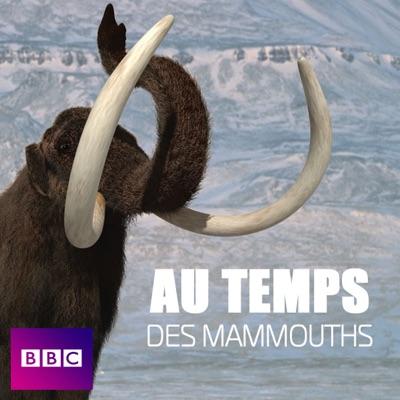 Aux temps des mammouths torrent magnet