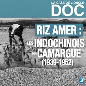 La Case de l'Oncle Doc - Riz amer : les indochinois en Camargue (1939-1952) torrent magnet