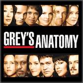 Grey's Anatomy, Saison 4 torrent magnet