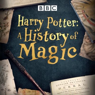 Harry Potter: A History of Magic torrent magnet