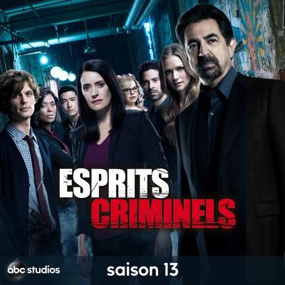 Esprits Criminels, Saison 13 torrent magnet