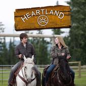 Heartland, Saison 2 torrent magnet