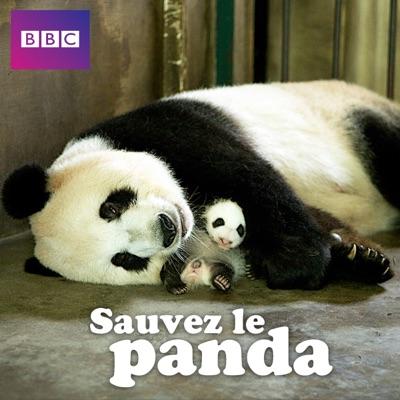 Sauvez le panda torrent magnet