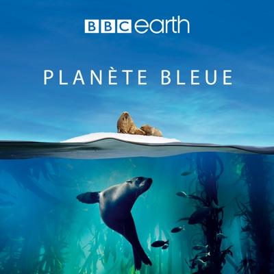 Planète Bleue torrent magnet