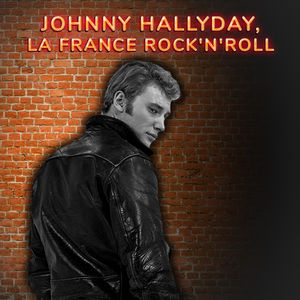Johnny Hallyday, la France Rock n'roll torrent magnet