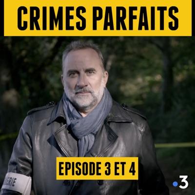 Crimes Parfaits, Saison 2 - Antoine Duléry torrent magnet