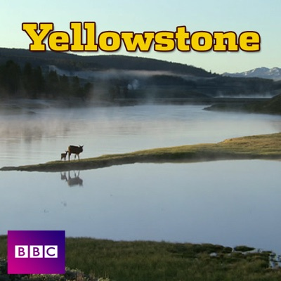 Yellowstone (VF) torrent magnet