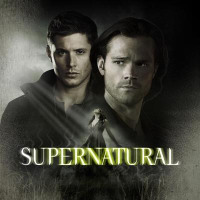 Supernatural, Saison 11 (VF) torrent magnet