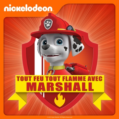 Paw Patrol - Tout feu tout flamme avec Marshall à télécharger