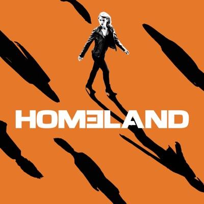 Homeland, Saison 7 (VF) torrent magnet