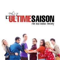 The Big Bang Theory, Saison 12 (VOST) à télécharger