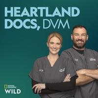 Heartland Docs, DVM Season 3 à télécharger
