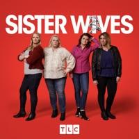 Sister Wives, Season 15 à télécharger