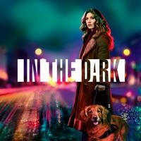 In the Dark, Season 1 à télécharger