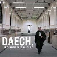 Daech, le dilemme de la justice à télécharger