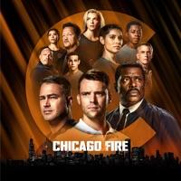Chicago Fire, Saison 10 (VOST) à télécharger