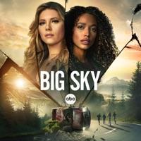 Big Sky, Season 2 à télécharger