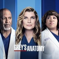 Grey's Anatomy, Saison 18 (VOST) à télécharger