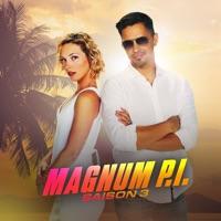 Magnum, Saison 3 à télécharger