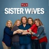 Télécharger Sister Wives, Season 9