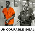 Télécharger Un coupable idéal