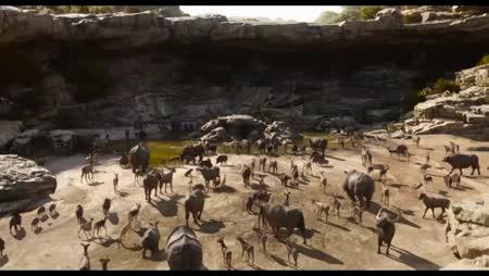 Voir Le Livre De La Jungle en streaming