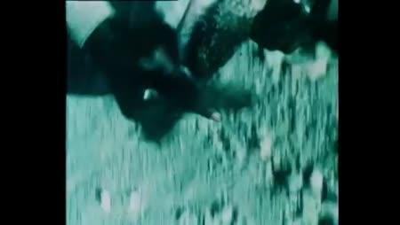 Voir Charley Le Borgne en streaming