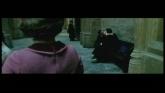 Harry Potter et l'Ordre du Phénix en streaming