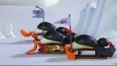 Pingu streaming
