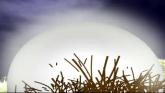 P'tites Histoires Au Clair De Lune en streaming