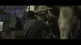 Cyrille, Agriculteur, 30 Ans, 20 Vaches, Du Lait, Du Beurre, Des Dettes streaming
